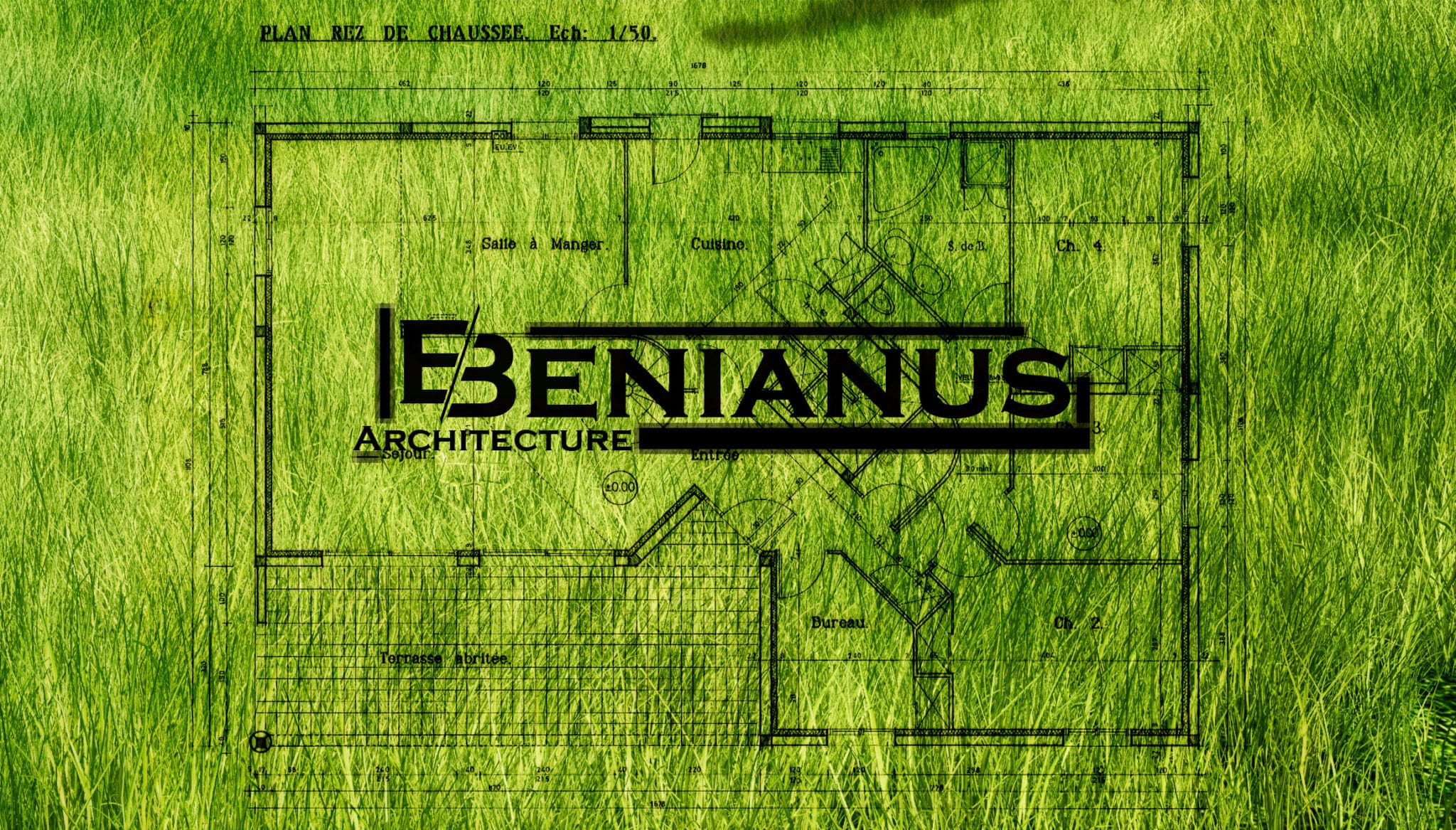 Benianus3d